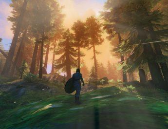 valheim blackforest